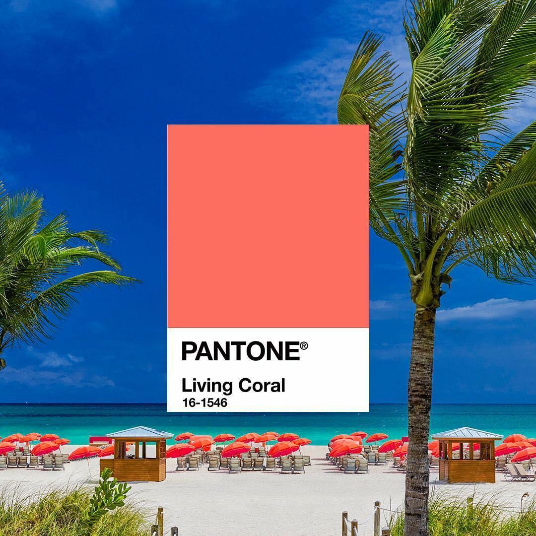 corallo colore pantone 2019